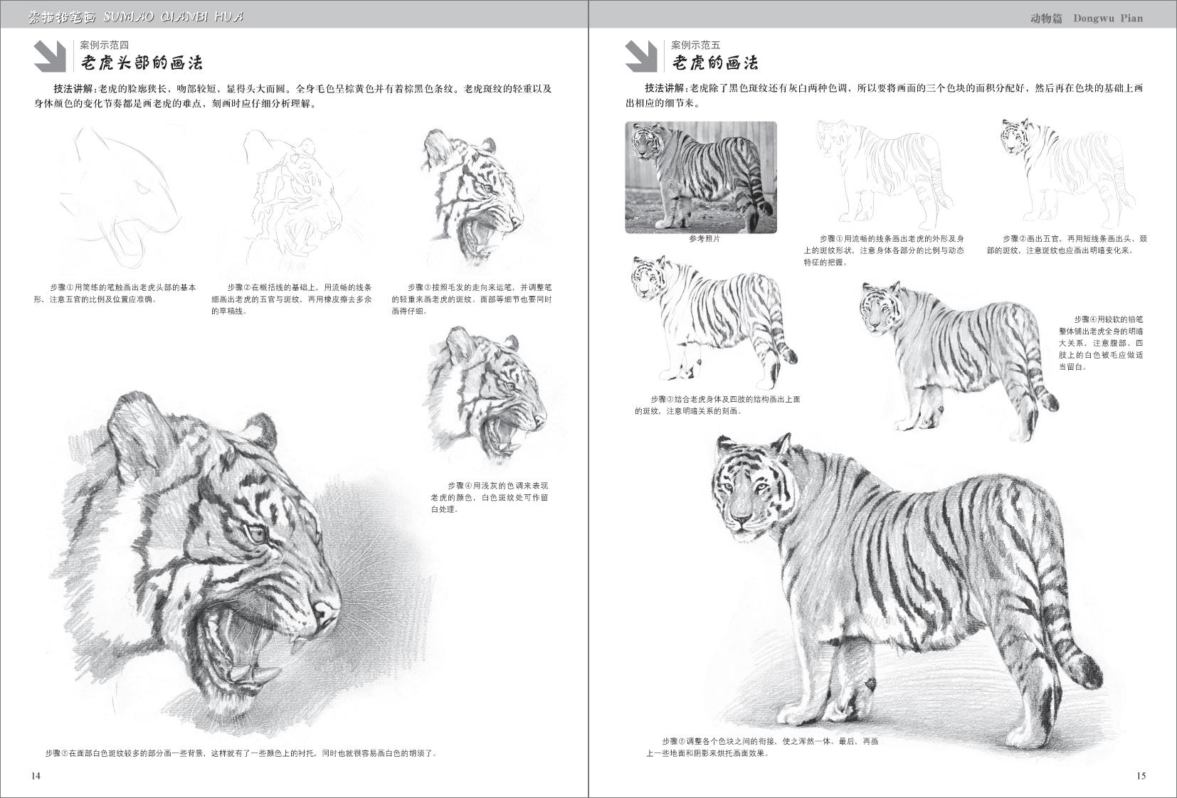 正版 素描铅笔画 动物篇 画马虎狮子兔猪等画法 手绘新生必备从入门到图片