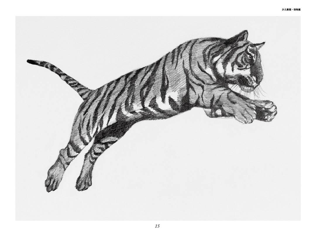 正版 全3册 新编儿童绘画入门教程 少儿素描 动物篇素描静物石膏几何