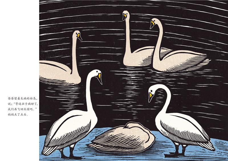 感悟生命动物绘本:大天鹅的离别/(日)手岛圭三郎:图书